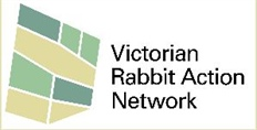 Rabbit Leadership Program