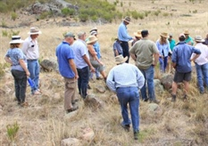 Biological Farming Field Walks