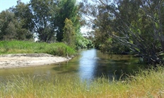 Kiewa River Makeover Walk & Talk