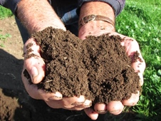 More bugs in the system: Soil biology forum - NOW FULLY BOOKED!