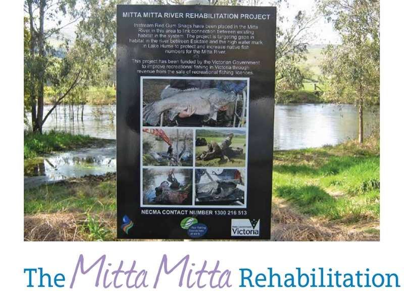 The Mitta Mitta rehabilitation project