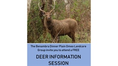 Deer Information Session