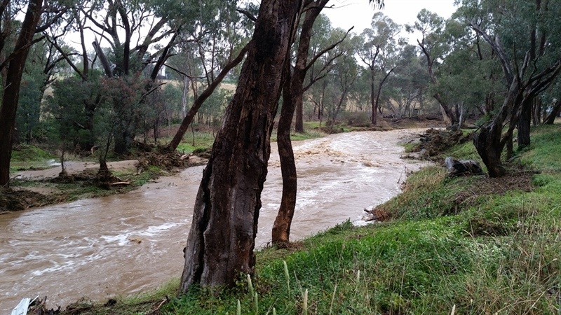 Waterway Funding Available for Flood Impacted Landholders