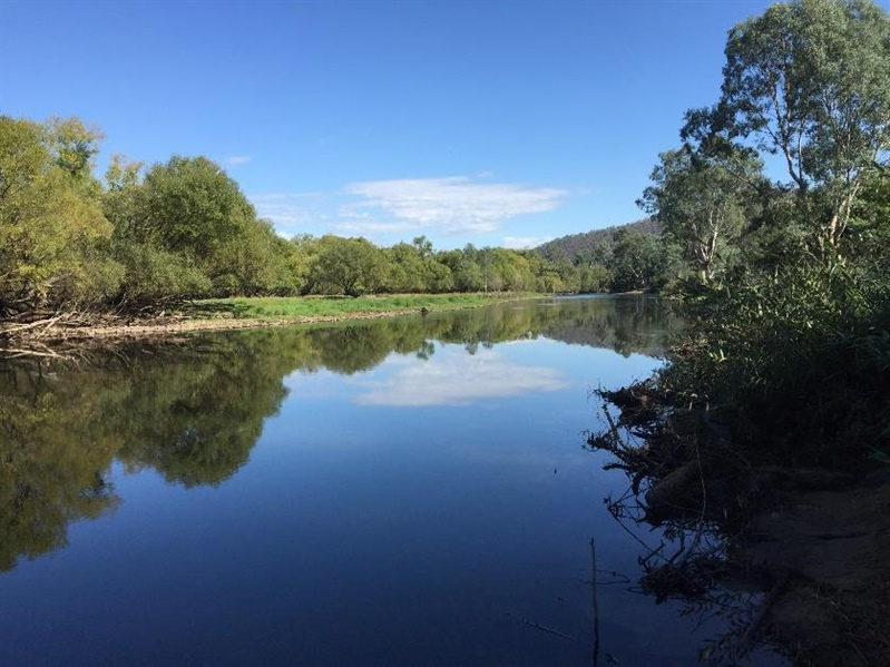 Fishing fees to restore habitat at Katie Peters Reserve